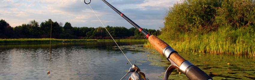 Рыбалка амур