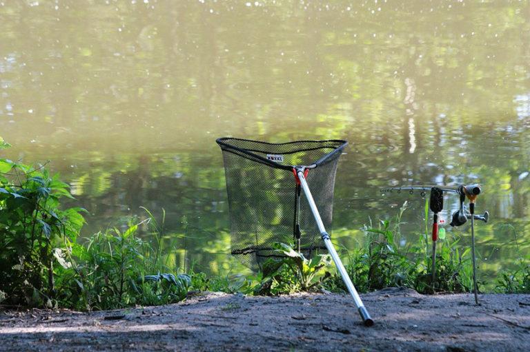 благоприятное время рыбалки