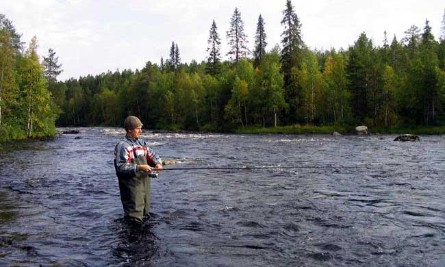 Преимущества рыбалки на севере Карелии