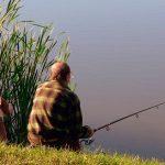 Обзор платной и бесплатной рыбалки в поселке Бисерево — в московской области