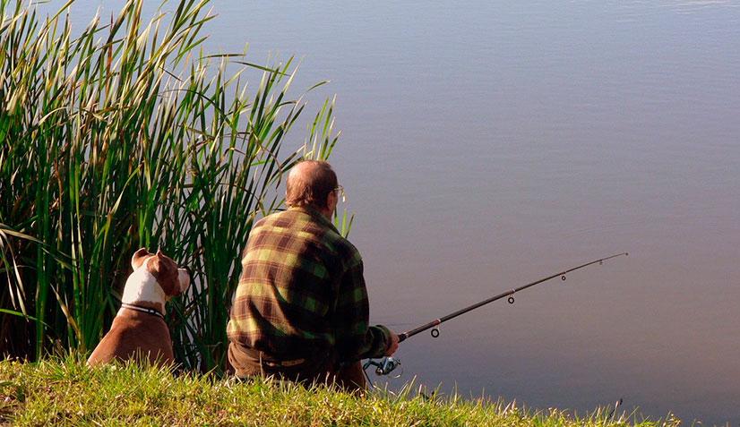 Обзор платной и бесплатной рыбалки в поселке Бисерево - в московской области