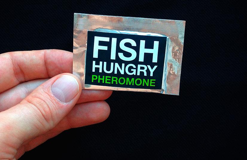 Официальный активатор клёва FishHungry (ФишХангри)