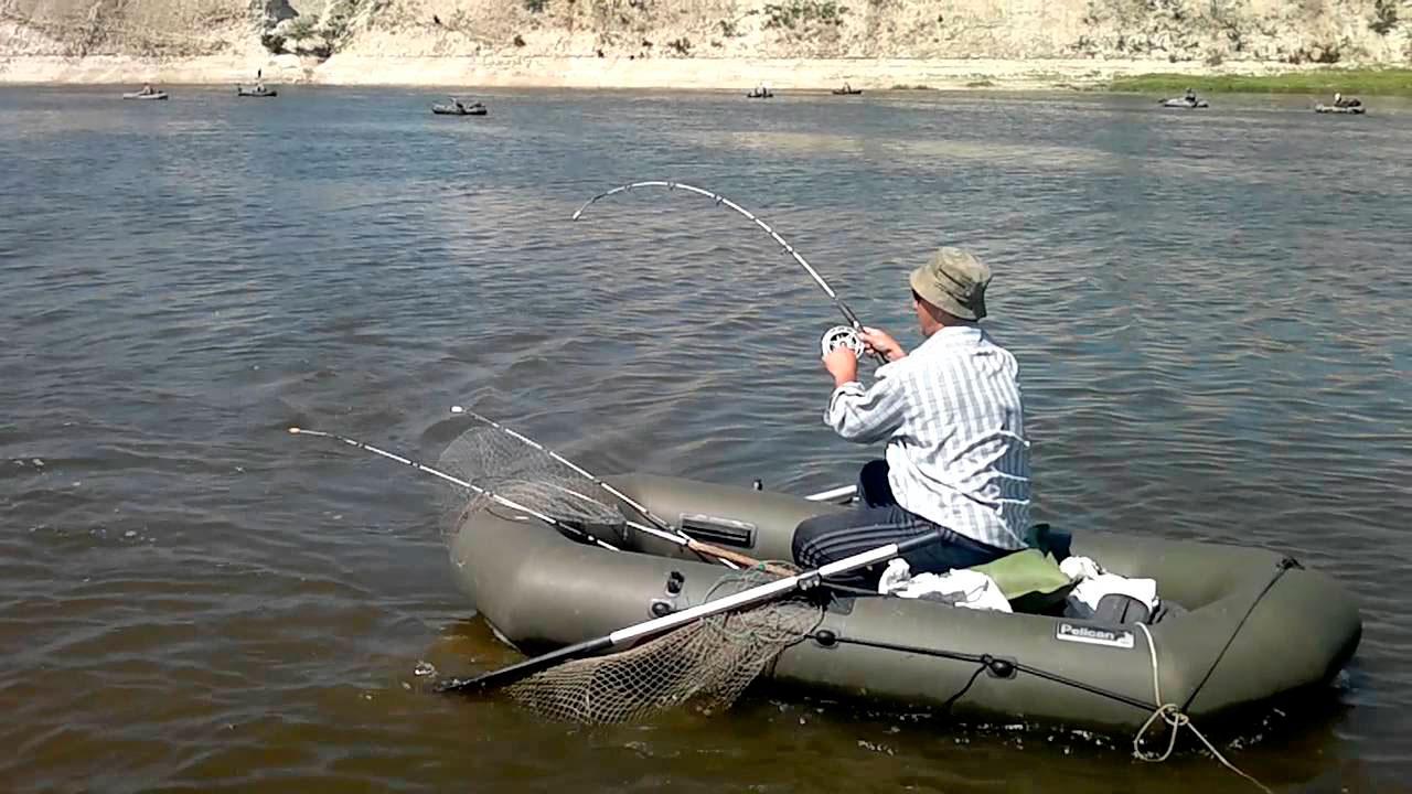 рыбалка в волгоградской области видео сазан