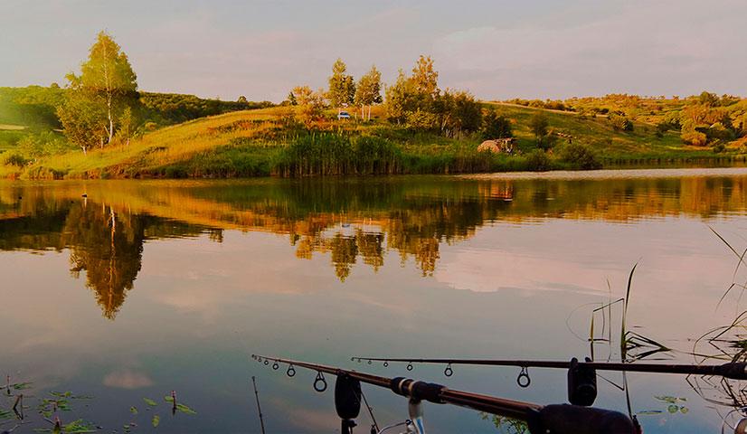 """Обзор рыбного хозяйства """"Нарские острова"""" - водоемы, цены, контакты и отзывы"""