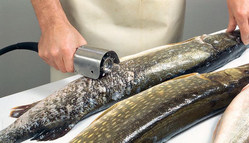 Электрическая рыбочистка - отзывы, обзор, топ 10 лучших моделей