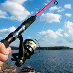 Платная рыбалка в подмосковском Пирогово — обзор, цены и отзывы