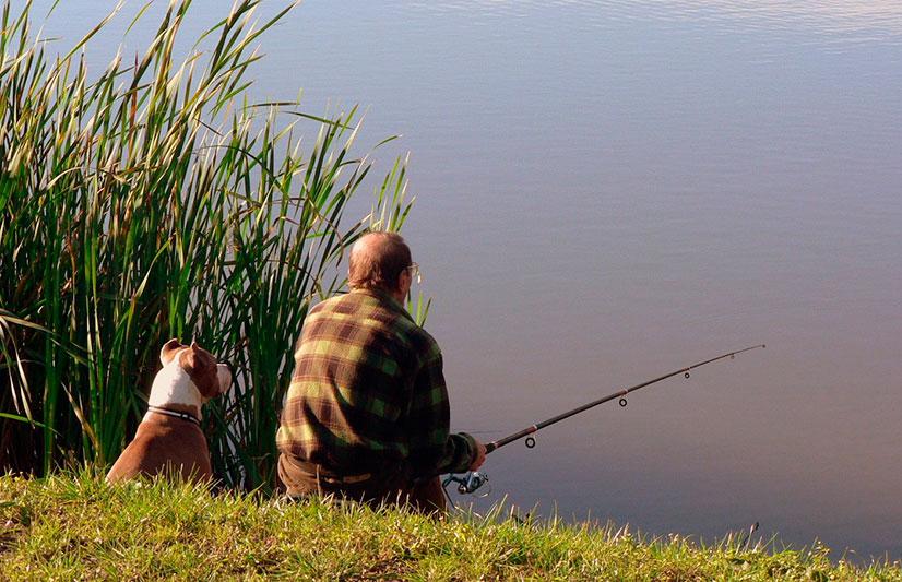 1406265404_fishing