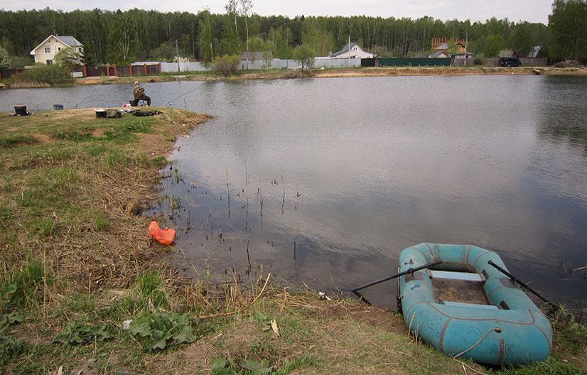 Платная рыбалка в Пирогово - обзор водоемов, цены, контакты и отзывы