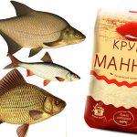 Ловим рыбу на манку — типы насадок, способы приготовления