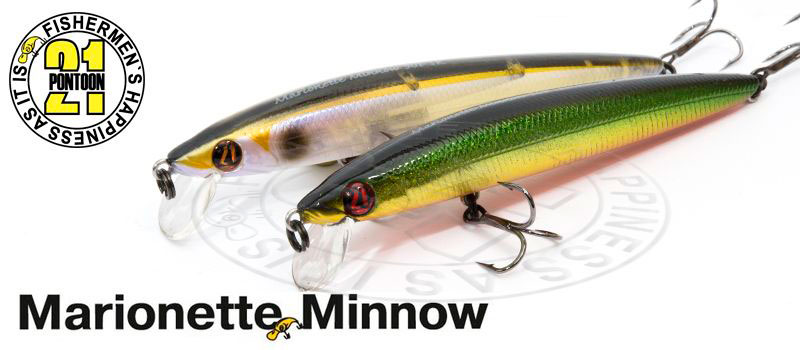 p21_marionetteminnow_top_enl