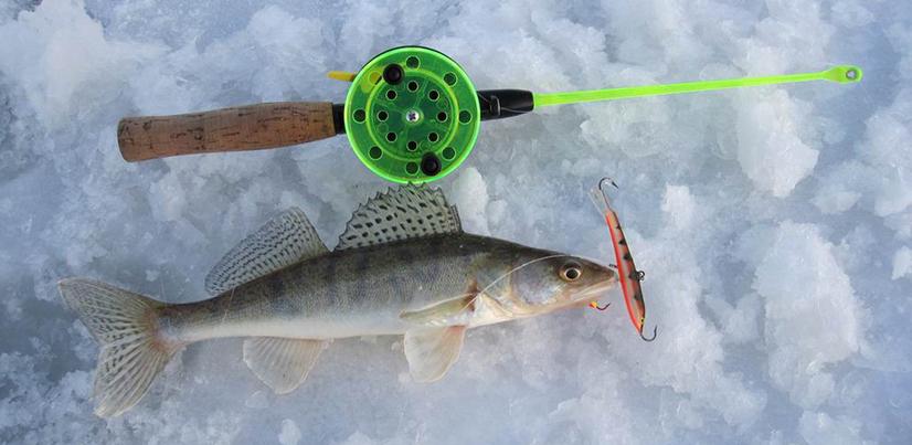рыбалка на балансир на судака и окуня