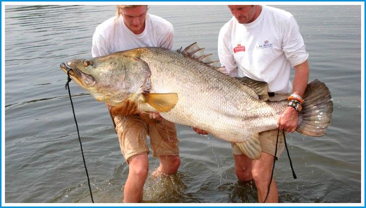 ловля рыбы там где ее нет