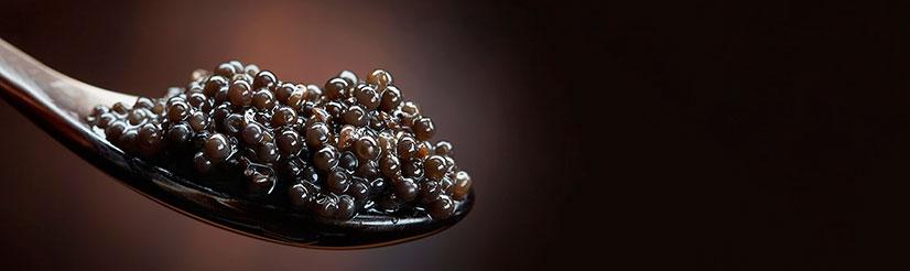 black-caviar-bg
