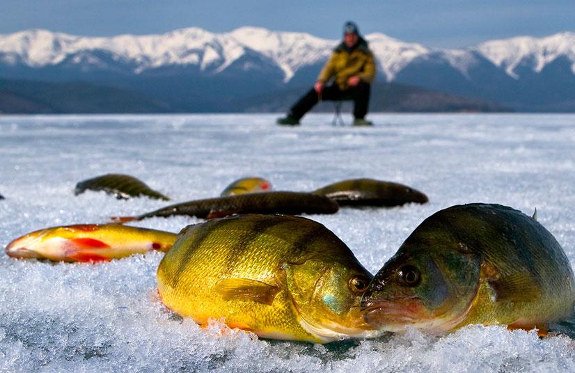 Оснастка зимней удочки - способы и советы