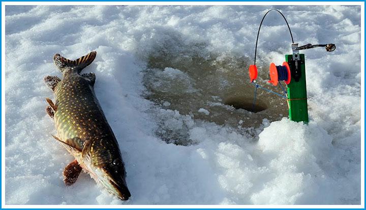 как ловить рыбу на флажок