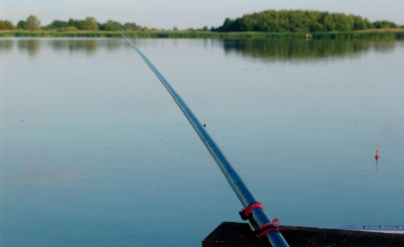 Поплавок для рыбной ловли на течении - формы, отзывы