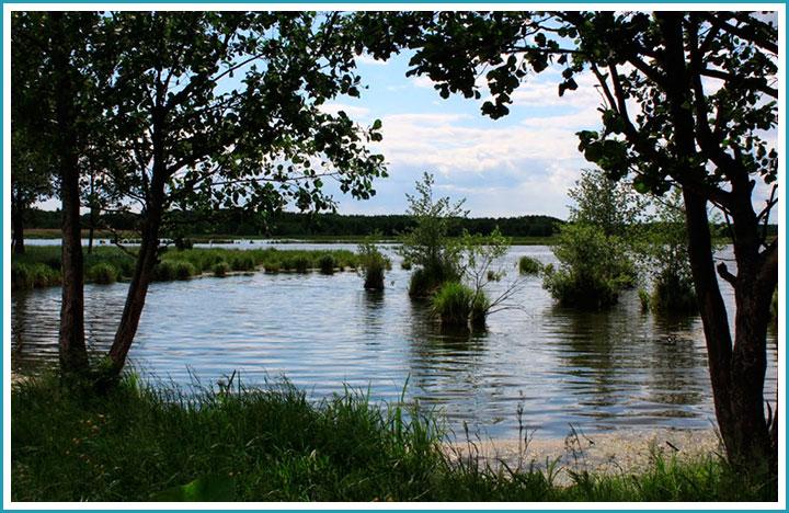 женевское озеро русская рыбалка 3.99