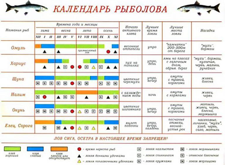 календарь клева рыбы в коми рыбхоз
