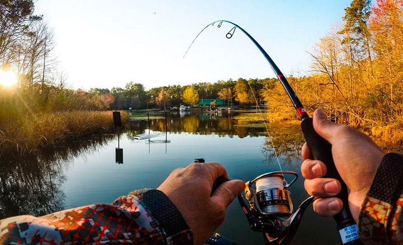 при каком ветре хорошо ловить рыбу