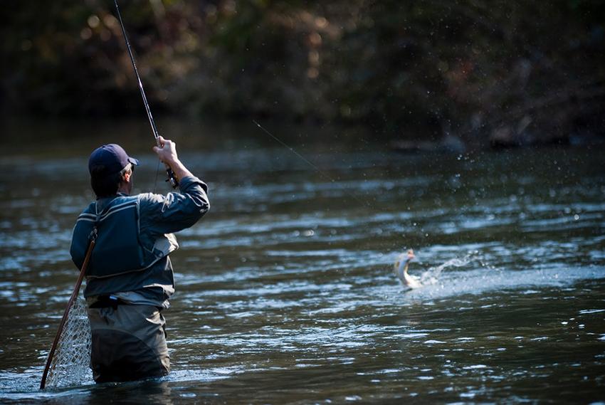 Платная рыбалка в Коротыгино