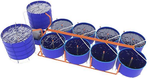 Организация водоёма для разведения осётров