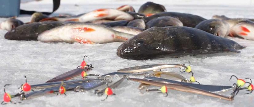 Зимняя рыбалка на блесны