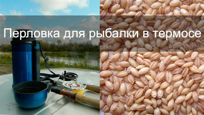 Все о том как запарить перловку для рыбалки в термосе - рецепты, советы и отзывы