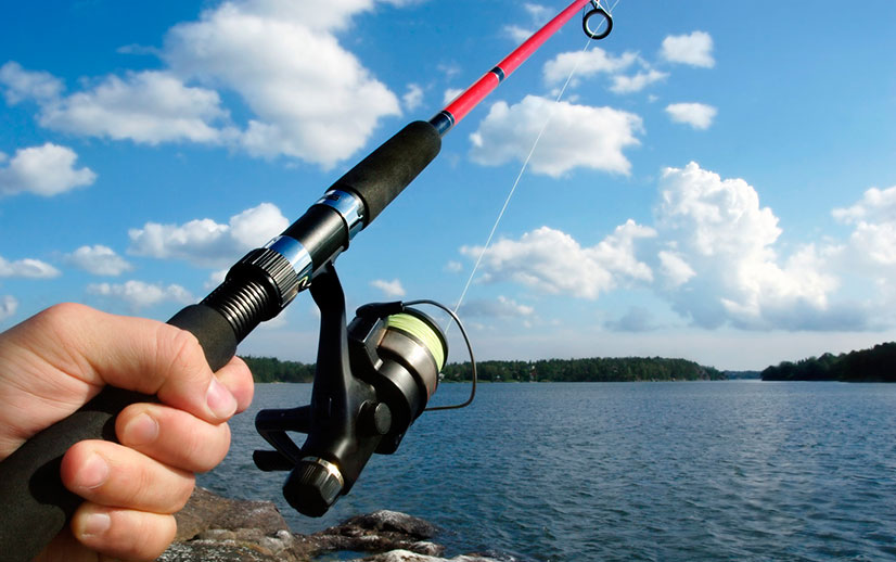 Платная рыбалка в подмосковском Пирогово - обзор, цены и отзывы