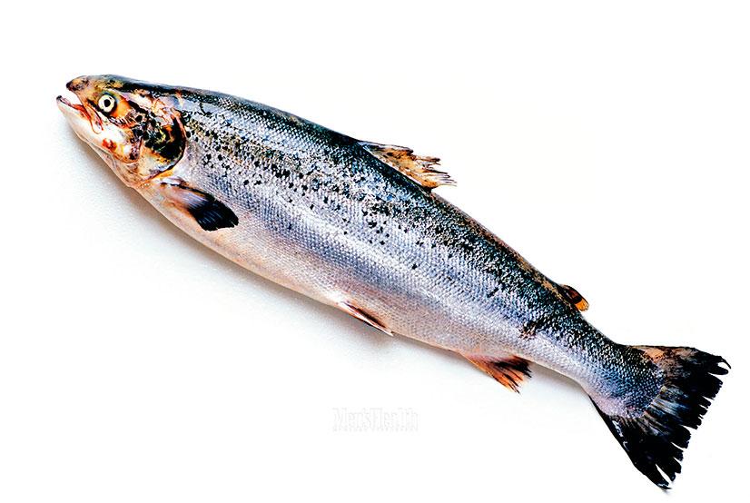 О рыбе хоке - описание, полезные свойства, рецепты