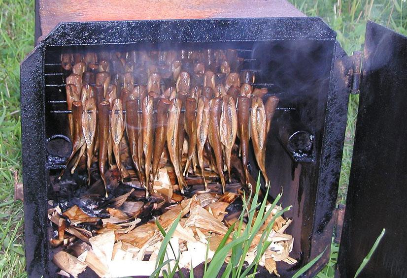 Коптильни для рыбы - виды и способы изготовления