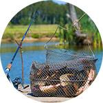 Погода и сезон когда рыба клюет лучше всего?