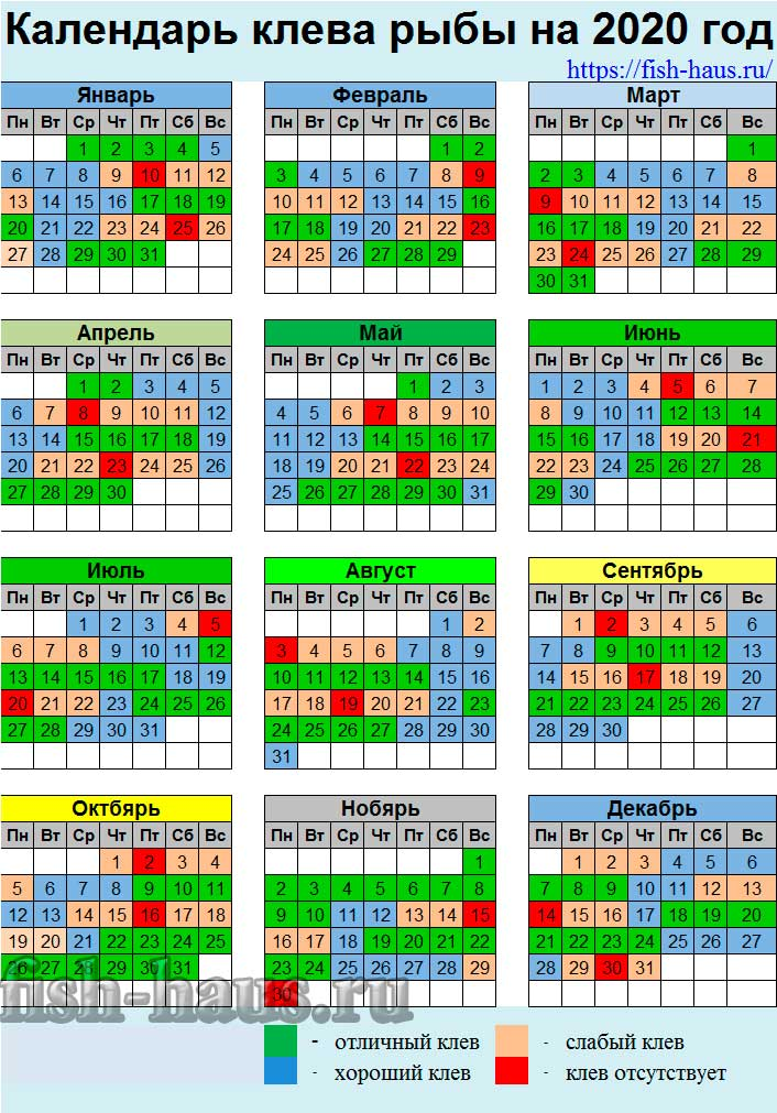 Календарь рыбака: клев и нерест рыбы по месяцам года